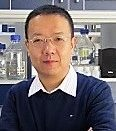 Wenhui Li,