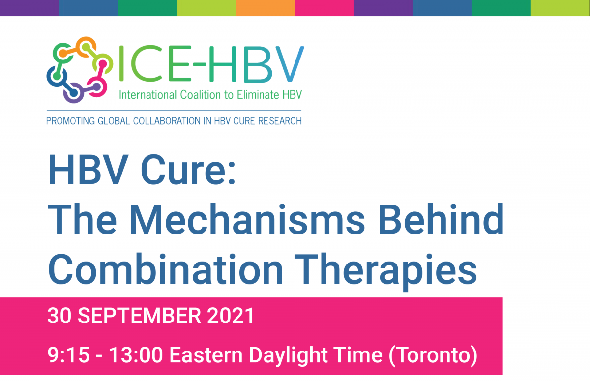 Program finalized for the Toronto Symposium on HBV Cure: The Mechanisms Behind Combination Therapies, taking place at the International HBV Meeting
