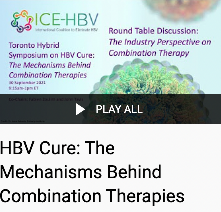 HBV Cure: The Mechanisms Behind Combination Therapies
